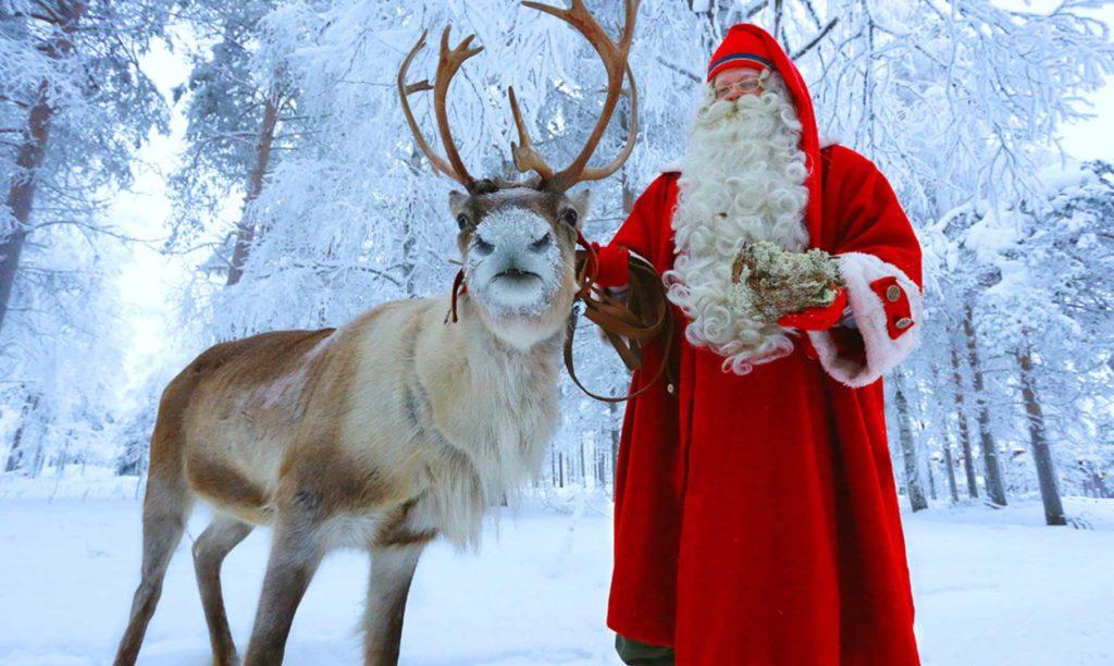 Renos de Papá Noel 10