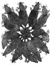 rey de las ratas